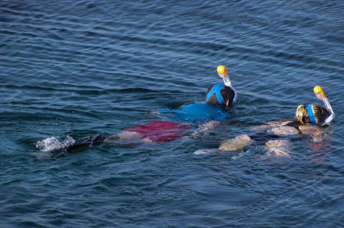 About-Snorkelling-In-Hikkaduwa