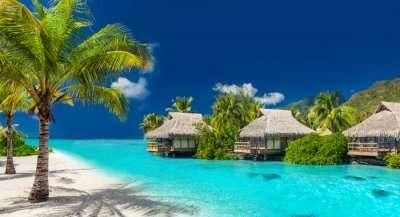 Cover Fiji In Decemberepb0310