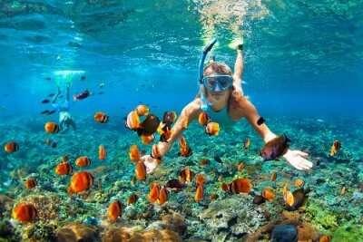 Snorkeling in Hikkaduwa