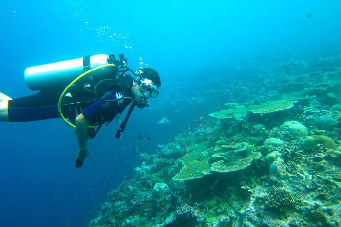 diving in water