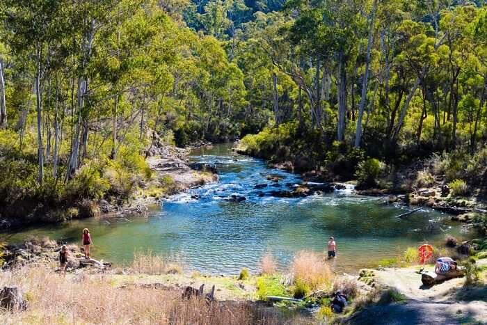 Hot springs Australia