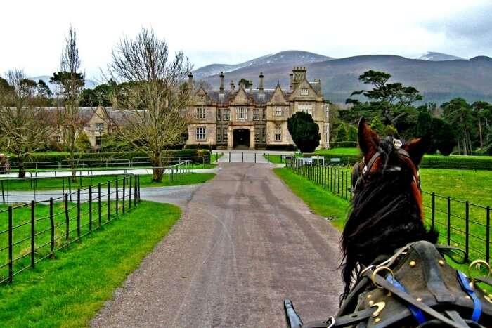 Killarney National Park and Muckross House & Garden