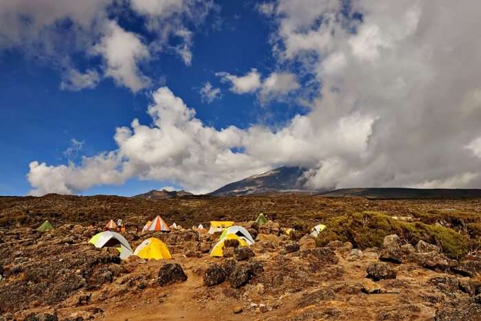Mt.Kilimanjaro- Lemosho Route