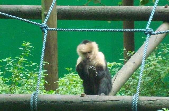 Parque Zoológico Nacional SimónBolívar