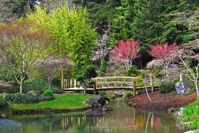 Visit Japanese Gardens
