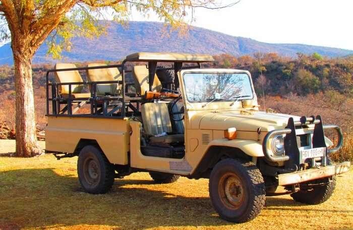 National Park Safari