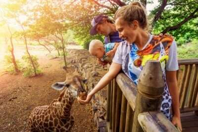 Best Zoos In Cape Town