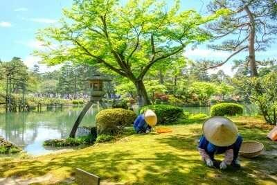 japan may cover