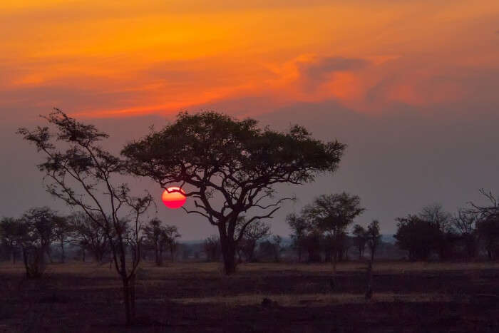 Is It A Good Time To Visit Tanzania In December
