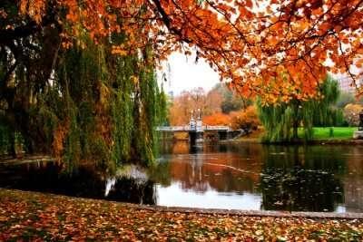 Lakes In Boston