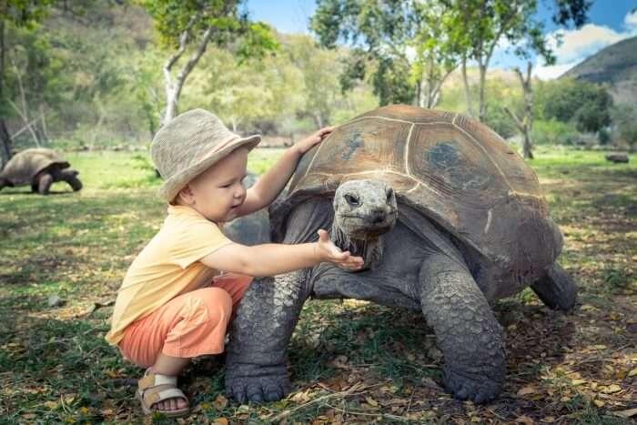 Zoos In Seychelles