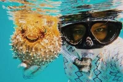 snorkeling tanzania cover img