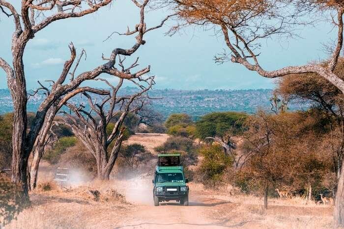 Awesome Winter season In Tanzania