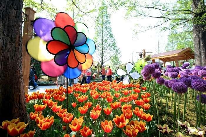 Annual Flower Festival