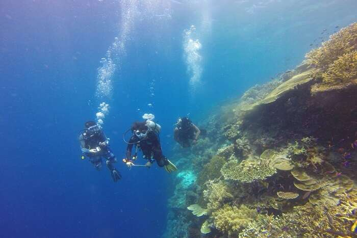 Best Time To Go Scuba Diving