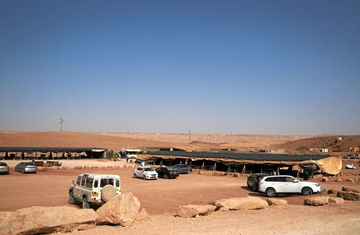 Camping-Along-With-Sightseeing-In-A-Jeep-Safari