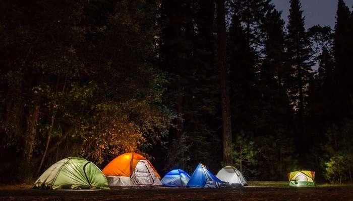 Camping At Sanjay Gandhi National Park