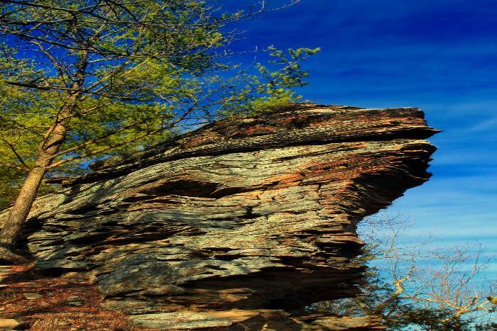 Eagle Rock Hiking Trail Homewood