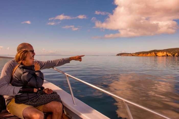 Gulf Eco Adventures