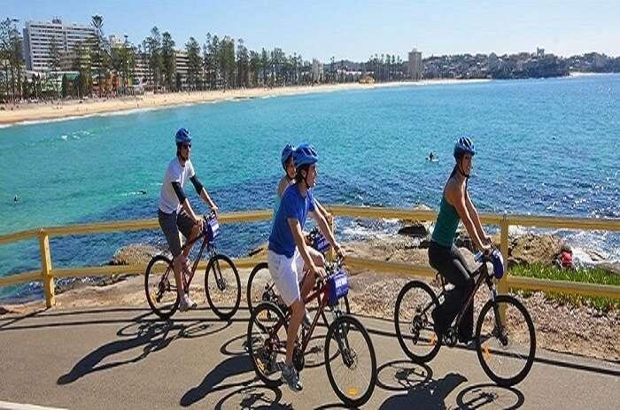 Manly Bike Tours