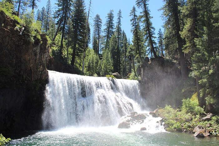 McCloud River Falls Trailhead