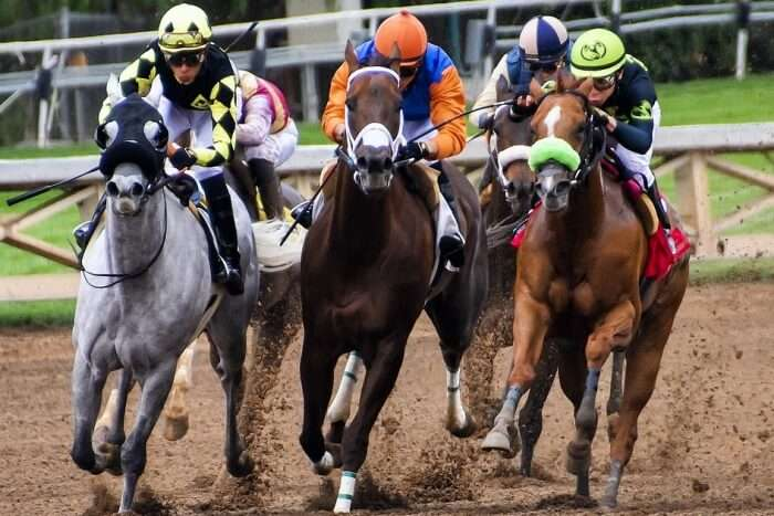 Scottsville Racecourse