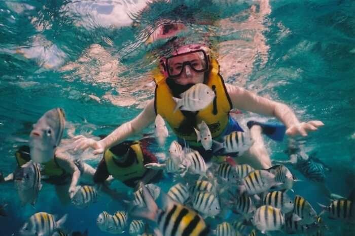 Snorkeling in Havelock