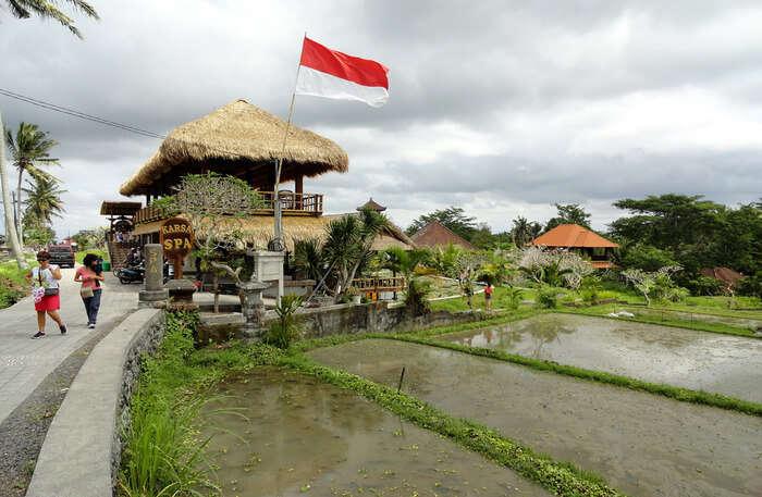 walk along the village