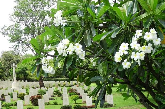 Tricomalee War Cemetery