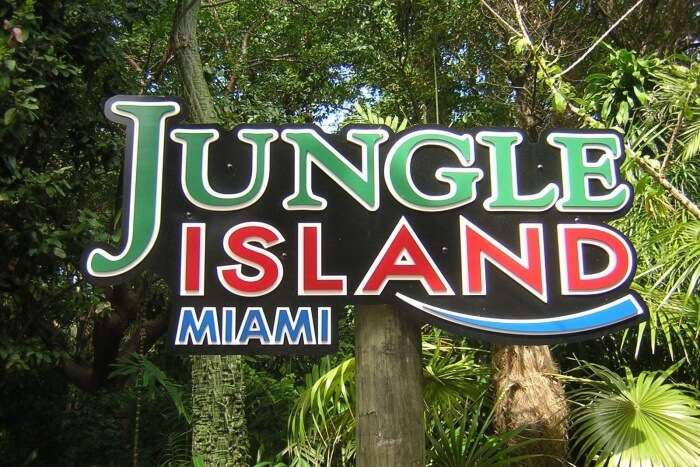 Valentine's Jungle Fun For Animal Lovers