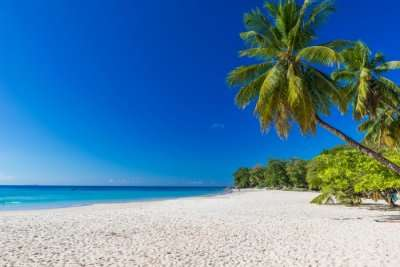Amazing Beau Vallon Beach