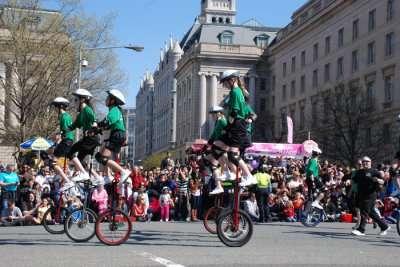 Amazing Festivals In Washington DC