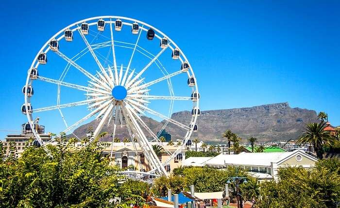 cover for theme parks in cape town
