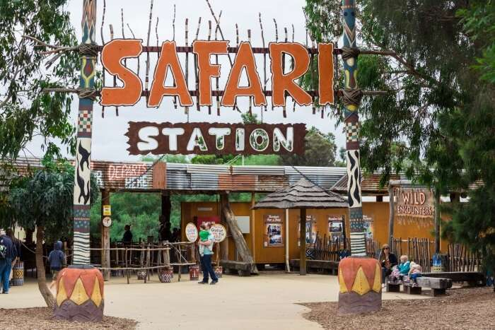 Best safaris in Melbourne