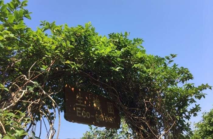 About Kadoorie Farm And Botanic Garden