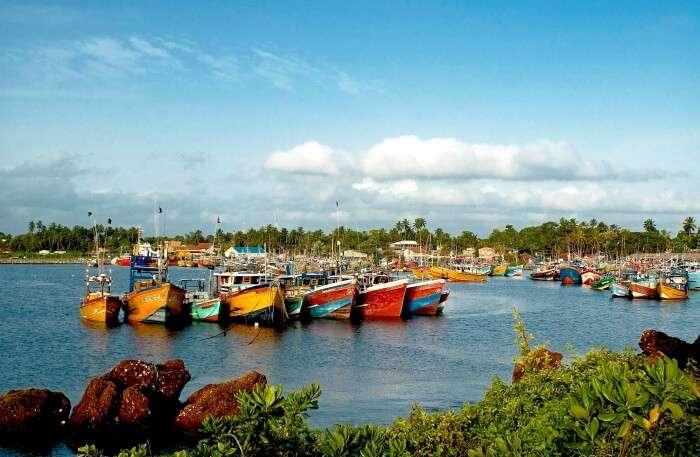 Beruwala Fish Harbour