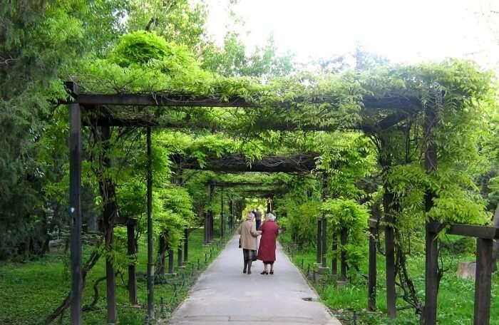 Cișmigiu Gardens