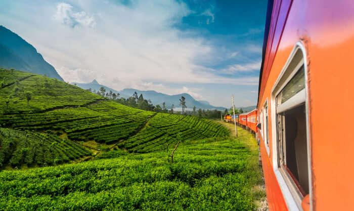 A train in Badulla in Sri Lanka