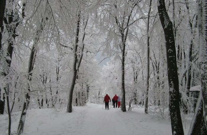 Dobogókő Winter Resort