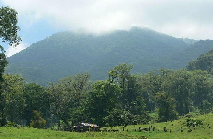 Los Tuxtlas Biosphere Reserve view