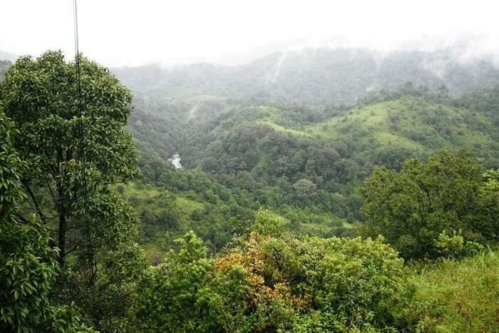Silent Valley National Park Basic Information