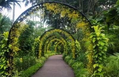 Singapore Botanic Garden in Singapore
