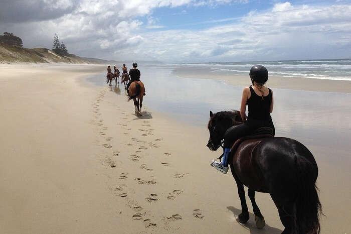 Take a beach horse riding tour