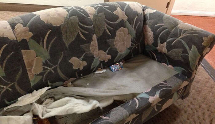 Bad condition of Sofa