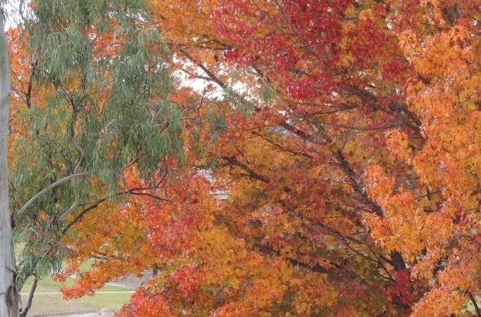 Weather During Autumn In Queensland