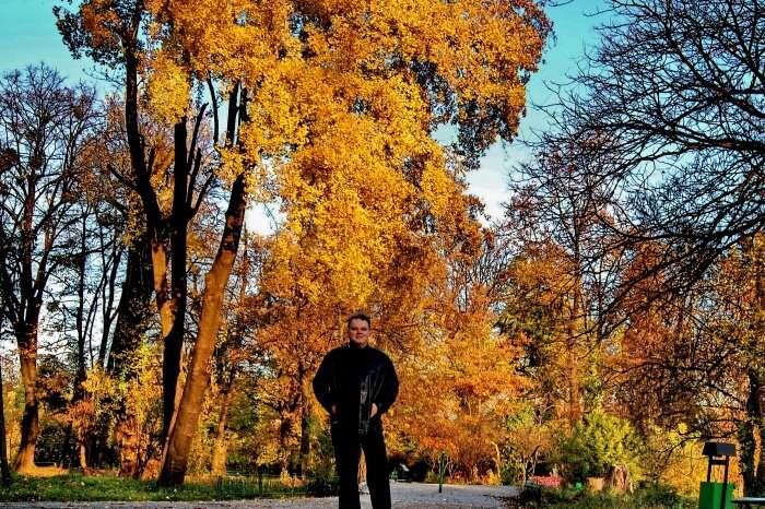 Autumn Season In Bucharest