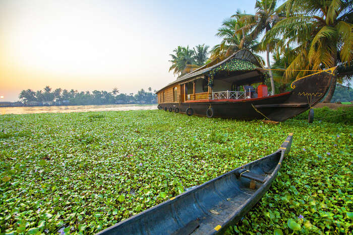 Incredible Summer In Kerala