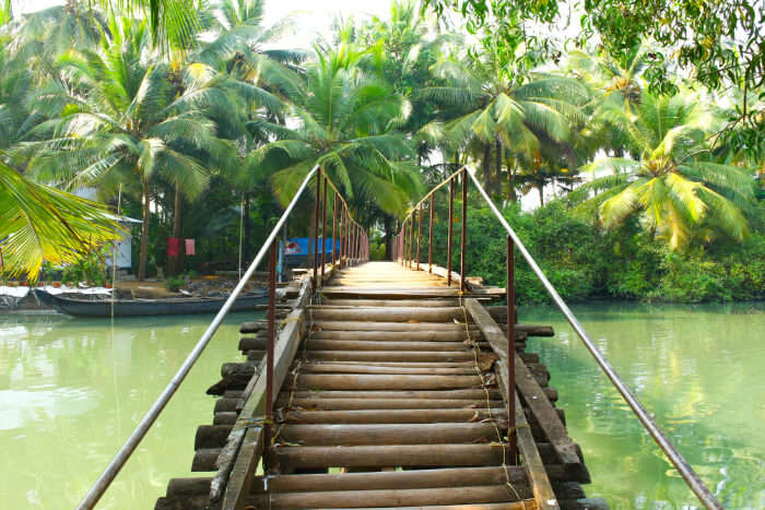 Best Places To Visit In Kumarakom