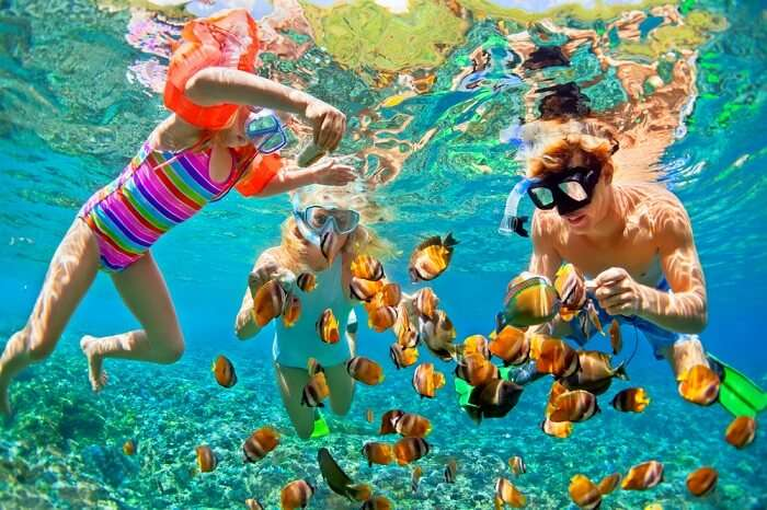 family snorkeling underneath water