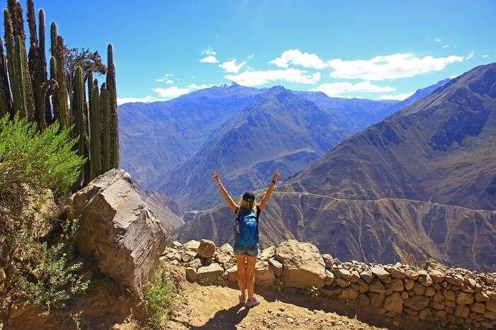 Magnificent Colca Canyon In Peru